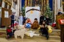 Impressionen Weihnachten 2014